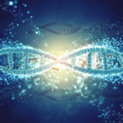 imagen genes