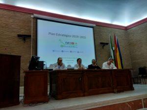 Plan estretégico 2019-2025